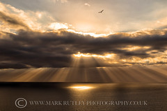 CREPUSCULAR (mark_rutley) Tags: grandcanaria holiday sunset vacation sunbeams crepuscular light clouds sky sunrays godrays sea