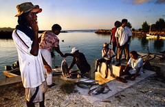 Retour de pêche. (renécarrère) Tags: seychelles ladigue pêche océanindien
