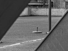 En attendant l'été - Waiting summer (p.franche Sick - Malade) Tags: panasonic lumix fz200 bruxellesbrussel brussels belgium belgique belgïe europe pfranche pascalfranche hdr dxo phototab flickrelite schaerbeek schaarbeek yourbestoftoday parrallèles béton acier steel parasol lines lignes parallel géométrique geometric architectory architecture skancheli monochrome noiretblanc blackandwhite zwartwit blanconegro schwarzweis μαύροκαιάσπρο inbiancoenero 白黒 黑白 чернобелоеизображение svartochvitt أبيضوأسود mustavalkoinen שוואַרץאוןווייַס bestofbw