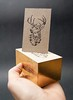 Estudio 2D (El Calotipo) Tags: cards businesscards tarjetas letterpress stamping gold edge cardboard design diseño