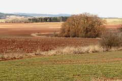 IMG_1661 Landscape (jaro-es) Tags: landschaft landscape nature natura natur naturewatcher naturemaster naturesfinest canon czechrep eos70d