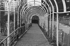 Taxpayer's Tunnel of Pointlessness (Robin Shepperson) Tags: monochrome tunnel park berlin germany d3400 nikon money waste feature city bw blackandwhite day buildings pavement street grey