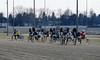 Berlin Trabrennbahn Mariendorf 31.3.2018 (rieblinga) Tags: berlin tempelhof mariendorf trabrennbahn sport wetten rennen 3132018 analog kodak ebk 100 dia
