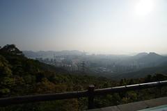 DSC01770 (X-Ray Alpha Photography) Tags: 香港 hongkong hongkong2018 香港二〇一八 kowloonpeak 飛鵝山