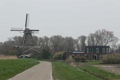 IMG_0025 (muirsr70) Tags: annapaulowna geo:lat=5285399600 geo:lon=483003000 geotagged netherlands nld noordholland