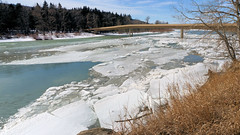 Breakup on the Bow (OldDogNewTrick) Tags: april112018 bowriver edworthypark springbreakup