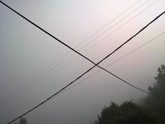 WP_20180612_10_10_00_Rich (2) (Kurrat) Tags: fog nebel portugal madeira baum linien kabel strommast smartphonephoto smartphone