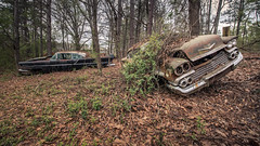 Enough About It (Wayne Stadler Photography) Tags: abandoned preserved junkyard georgia classic automotive derelict overgrown vehiclesrust rusty retro vintage oldcarcity rustographer rustography white