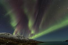 Northern lights in Fáskrúðsfjörður (*Jonina*) Tags: iceland ísland faskrudsfjordur fáskrúðsfjörður auroraborealis northernlights norðurljós night nótt sky himinn longexposure jónínaguðrúnóskarsdóttir march22nd2018 25faves 500views