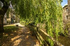 Springs Branch Canal (shabbagaz) Tags: great britain united kingdom 2018 a65 alpha england june north northern shabbagaz skipton sony town uk yorkshire greatbritain unitedkingdom