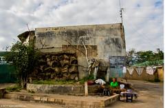 2017.06.27.2948 Tourist Trap (Brunswick Forge) Tags: grouped 2017 safari africa tanzania nikond500 favorited commented