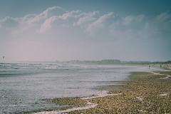 La bruma y la orilla (Alicia Clerencia) Tags: paisaje landscape mar sea playa beach storm temporal nubes clouds conchas shell bruma haze