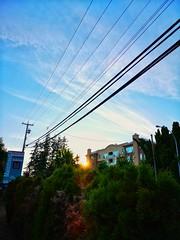Sun tucked. (thnewblack) Tags: huawei p20 p20pro leica leicaoptics android smartphone outdoors sun britishcolumbia f18 40mp snapseed