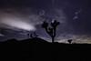Joshua Tree National Park (Mr_Flugel) Tags: joshua tree national park joshuatree stars astrophotography california nationalpark