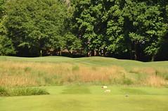 Settn Down Creek 068 (bigeagl29) Tags: settn down creek golf club ansley ga georgia alpharetta milton settndowncreek