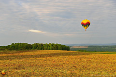 Aloft Horizons on Landing Approach - 17th Annual Letchworth Red, White, and Blue Balloon Festival (DTE_1065) (masinka) Tags: trees rural landscape hotair balloon bright warm etbtsy 17th annual letchworth festival rally 2018 photography danielnovakphoto sunny cloudy