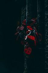 Cuori d'acciaio (gianmarcorolla) Tags: foto photo picture pic love amore heart cuore f11 18105 beauty bellezza italy italia sole sun verona nikon