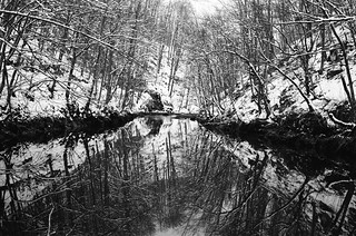 Reflections of dying winter
