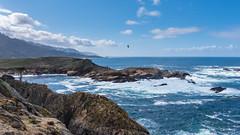 Headland Cove (Matt McLean) Tags: bird california carmel coast landscape monterey ocean pacific pointlobos shore