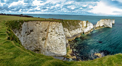 Old Harry's Rocks (cantdoworse) Tags: old harrys rocks swanage dorset england landscape canon 6d chalk cliffs sea grass