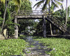 An old stone bridge over a canal in Alleppey (Ashish A) Tags: alleppey backwaters bridge bridgeovercanal canal canalfullofweeds greenery india indian kerala old oldbridge palmtrees water weeds weedsinacanal green