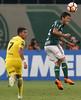 Palmeiras x Boca Juniors (11/04/2018) (sepalmeiras) Tags: marcosrocha allianzparque bocajuniors copalibertadores palmeiras sep
