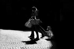 A Little Cart (Mattiii photo) Tags: street streetphotography streetphoto streetshot streetphotographer streets streetitalia streetph streetshots streetlife streetphotograph streetparma strada streetimage streetminimal streephotographer streethsot italianstreetphotography italianstreetphotographer blackandwhite blackandwhitephotography blackandwhitephoto blackandwhiteshot blackandwhitephotographer blackwhite bnw bnwphoto bnwphotography bnwshot biancoenero biancoeneroforever biancoenerofoto bianco e nero cart carretto person minimal minimalist mininalism lovely son child children bolzano italia italy bozen italian ita italiano image bolzanobozen yeah great love three two one carts wow monochromatic monochrome persons super shadows shadow light lights monkey city cityscape