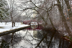 Elm Park (Chancy Rendezvous) Tags: frost snow elmpark water pond worcester cold reflection surface trees park footbridge bridge affinity affinityphoto serif weather
