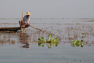 Lac Inle- Myanmar