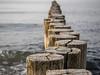 A bit wonky (katrin glaesmann) Tags: sea groynes buhnen nienhagen mecklenburgvorpommern ostsee balticsea wood