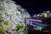 Cherry Blossom &  Shinkansen (Jennifer 真泥佛) Tags: shinkansen 霞城 新幹線 つばさ つばさ号 山形県 桜 夜桜 日本 jr japanrailway