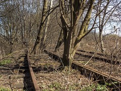 Round The Bend (Jason_Hood) Tags: disused abandoned railway railroad bescot bescotcurve southstaffordshireline southstaffordshirerailway