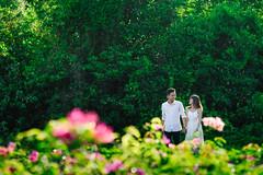 DSC08702-3 (Tiến Đặng (Photographer)) Tags: sweetyoungcouple sun suuny mylove love truelove true story pre wedding couple green rainbow forever