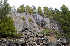 Rock forest (quinet) Tags: 2018 canada whistler britishcolumbia 124