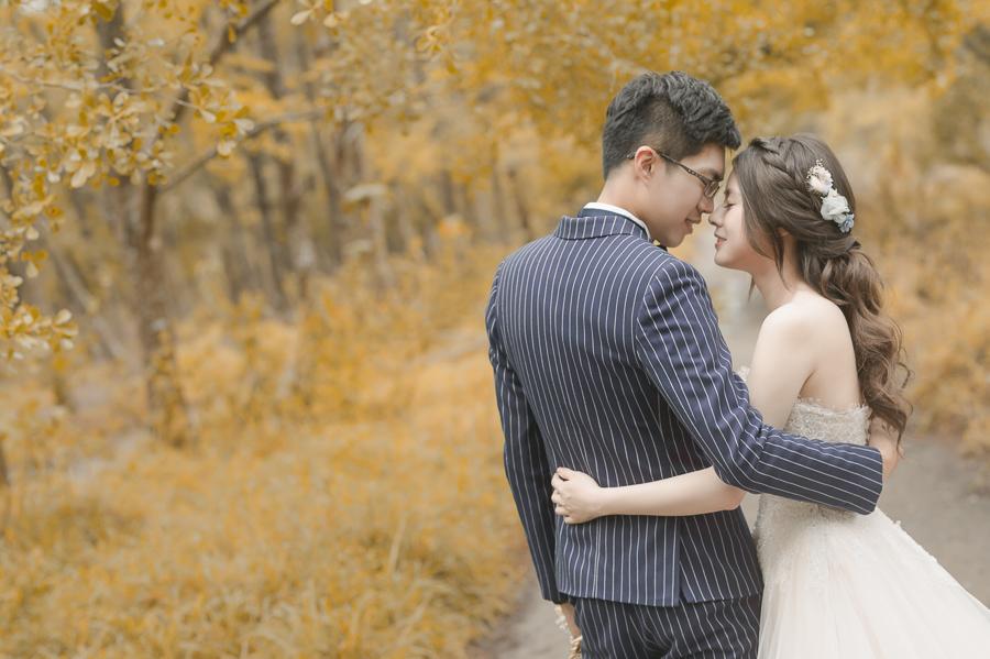 42044261595 0a842b6112 o [台南自助婚紗] Albert & Vicky/范特囍手工婚紗