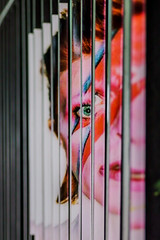 David Bowie Gate Illusion: Aladdin Sane (vertical) (Joshua Mellin) Tags: bowie davidbowie streetart illusion gate nyc newyorkcity aladdinsane rock artist music visage face davidbowieis brooklynmuseum manhattan 42bondst lightning bolt lightningbolt 70s glam lips eye eyes sliced cut concert street art museum brooklyn starman blackstar black fence color pink blue red orange mouth nose 42bondstreet bondstreet new york city newyork newyorknewyork newyorkcitynewyork scottvandervoort streetartist famous musician live summer 2018 tickets exhibit soul lives living best favorite singer era green noho soho album cover albumcoverart bbbbowie