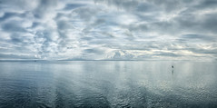 Blue Infusion (Natalia Medd) Tags: panarama iphone7plus blue ocean seaside bird flight reflection boat morning clouds calm tranquility water