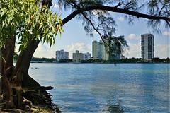 Miami South Channel. (Aglez the city guy ☺) Tags: architecture biscaynebay urbanexploration waterways seashore walkingaround walking street outdoors seascape exploration building downtownmiami