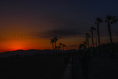 19 (morgan@morgangenser.com) Tags: sunset red orangeyellow blue pretty cloud silhouette sun evening dusk palmtrees bikepath sand beach santamonica pacificpalisades beautiful black dark cement amazing gorgeous inawe ca