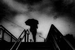 20180508 Rainy weather (soyokazeojisan) Tags: japan osaka city people bw blackandwhite walk monochrome rain umbrella digital fujifilm xq2 2018 stairs shadow sky clouds