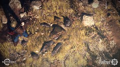 Fallout-76-130618-017