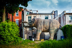 Elephant in the Yard?! (A Great Capture) Tags: jane sculpture bloorstreetwest baobao houses homes toronto backyard elephant yard agreatcapture agc wwwagreatcapturecom adjm ash2276 ashleylduffus ald mobilejay jamesmitchell on ontario canada canadian photographer northamerica torontoexplore spring springtime printemps 2018 sigma cityscape urbanscape eos digital dslr lens canon 70d outdoor outdoors streetphotography streetscape photography streetphoto street calle history historic