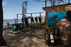 Calvi, Diving Calvi 2612.jpg (Hugues Brun) Tags: corse club plongée lieux divingcalvi france calvi
