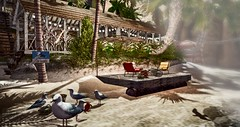 TLC/LTD DECORATING CONTEST - Epipheny Nitely - TLC seagulls FATPACK (by Epifania Nhafiero) Tags: home secondlife nature seagulls lovetodecorate tlchomecollection tlcanimals seaside beach landscape homedecor themescape palmtree dock windlight shadows contest tlc ltd