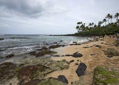 Turtle Beach Cove (fantommst) Tags: lisaridings fantommst laniakea turtle beach honolulu oahu hawaii hi usa us sea seascape ocean pacific cloudy sand rock shelf tide empty