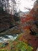 Cascada del Estrecho (Luis_Amor) Tags: otoño senderismo montaña rio cascada fanlo aragón españa es