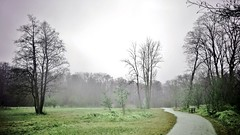 Walking away (farmspeedracer) Tags: sky park mist weather rain march 2018 märz tree isolation lonely loneliness green bench scare landscape sit sitting run nature