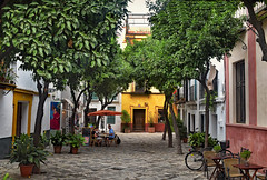 Alfresco Dining (Jocelyn777) Tags: cafe architecture houses foliage historictowncentre barriosantacruz sevilla andalucia spain travel textured