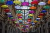 United Colors of Genoa (Cristian Degl'Innocenti) Tags: colors genoa genova italy italia true great stunning amazing best canon 6d unbrella city