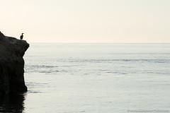 13. Chiloe maritime, Chile-2.jpg (gaillard.galopere) Tags: 200mm 2018 300mm 5d 5dmkiii 70300mm apn americadelsur amériquedusud canon chiloe chiloé foto gaillardgalopere gaillardgalopère galopere galopère ile lis lens overland overlander overlanding photo southamerica travel agua camera coast cámara eau isla island latinamerica lifeguard longlens mar mer mkiii ocean océan outdoor pacific pacifique photographie photography reflex sea teleobjectif telezoom téléobjectif télézoom water wwwgaloperephotocom zoom